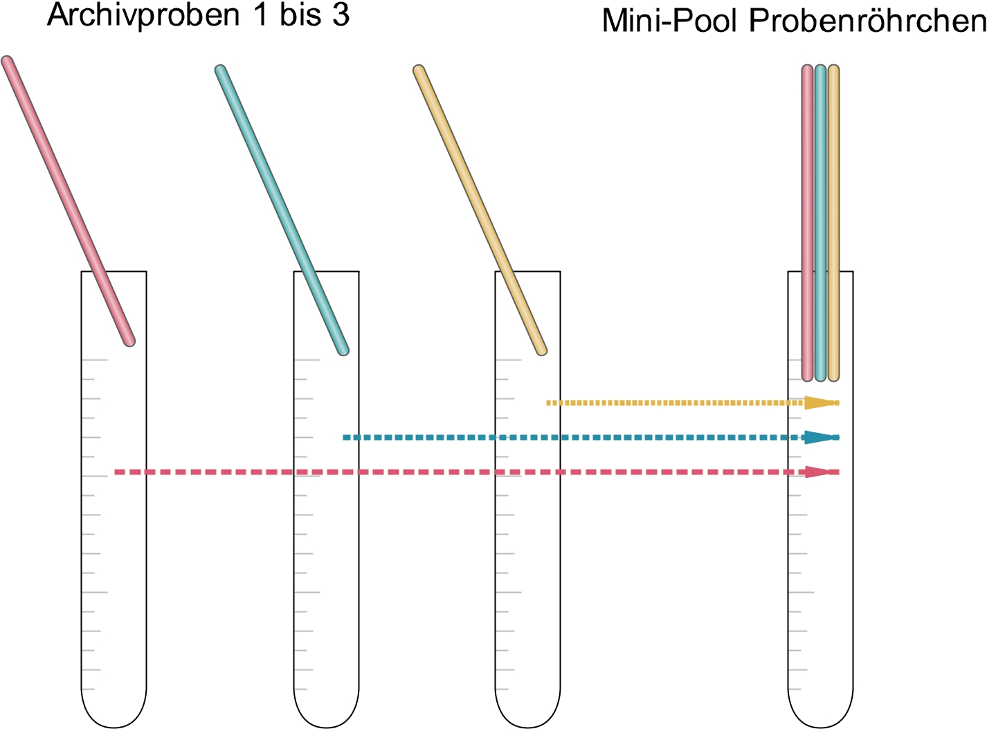 Schema PCR Corona Pooltest